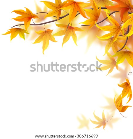Autumn branch with maple leaves on white background - stock vector
