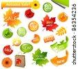 Autumn Collection Sale Elements, Vector Illustration - stock vector