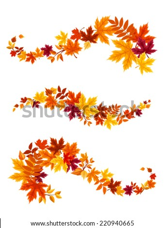 Autumn colorful leaves. Vector illustration. - stock vector