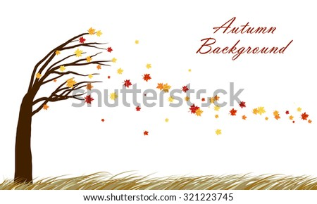 Autumn  design from tilting maple tree with blowing away leaves on white background. Elegant design with copy space and ideal balanced colors. Vector illustration. - stock vector