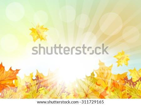 Autumn  Frame With Falling  Maple Leaves on Sky Background. Elegant Design with Rays of Sun and Ideal Balanced Colors. Vector Illustration. - stock vector