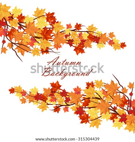 Autumn  Frame With Maple Leaves on Branches of Tree  Over White Background. Elegant Design with Text Space and Ideal Balanced Colors. Vector Illustration. - stock vector