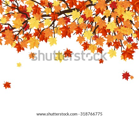 Autumn  Frame With Maple Tree Branches and Leaves Over White Background. Elegant Design with Text Space and Ideal Balanced Colors. Vector Illustration. - stock vector