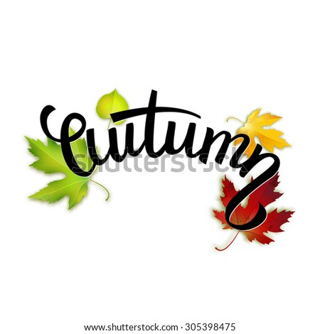 Autumn handwritten text, colorful leaves and lettering, vector illustration