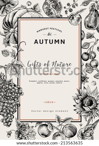 Autumn harvest. Vector vintage card. Frame with flowers, fruits, nuts and pumpkin. Black and White. - stock vector