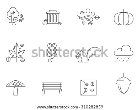 Autumn icons in thin outlines. Falls, windy, leaves. - stock vector