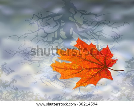Autumn leaf on water (isolated maple leaves are in my gallery) - stock vector