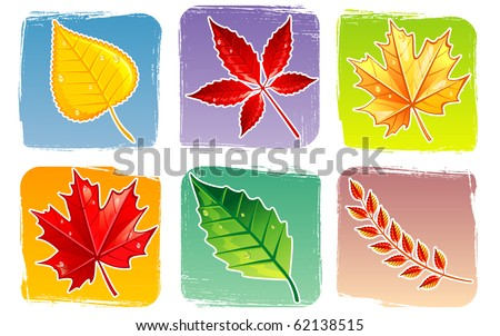 Autumn leafs - stock vector