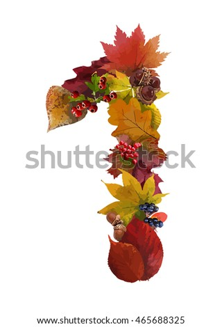 Autumn leaves and berries. Autumn wreath or garland. Number one. Vector.