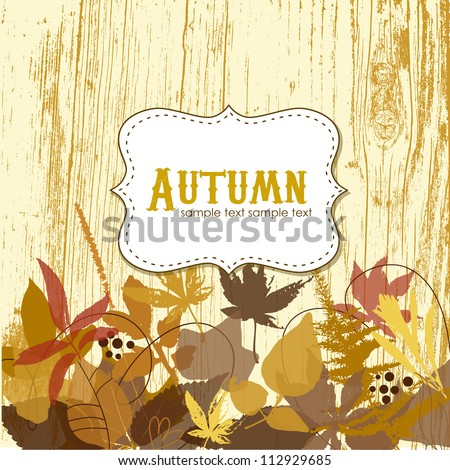Autumn leaves background - stock vector