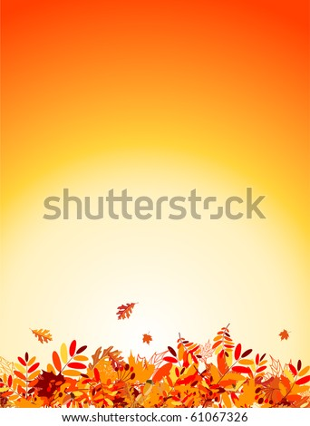 Autumn leaves background for your design - stock vector