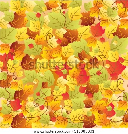 Autumn leaves background, illustration, vector