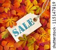 Autumn leaves sale tag, eps10 vector - stock photo