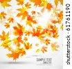 Autumn leaves. Seasonal vector background - stock vector