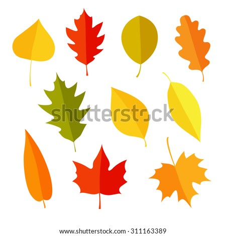 autumn leaves set, isolated on white background. simple cartoon flat style, vector illustration. - stock vector