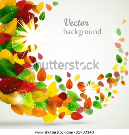 Autumn leaves swirl background. - stock vector