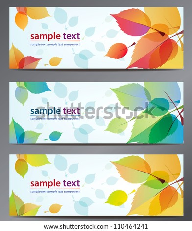 autumn leaves vector background brochure template. Set of floral cards