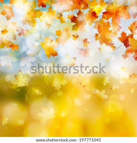 Autumn maple leaves background. And also includes EPS 10 vector - stock vector