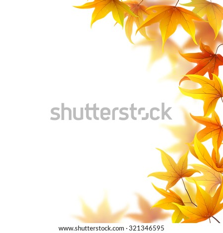 Autumn maple leaves falling on white background - stock vector