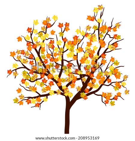 Autumn maple tree. EPS 10  Vector illustration without transparency. - stock vector