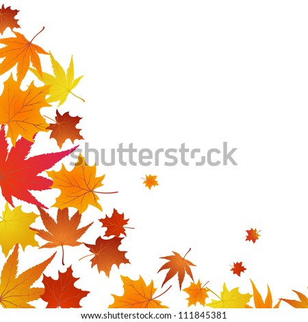 Autumn maples falling leaves background. Vector illustration. - stock vector