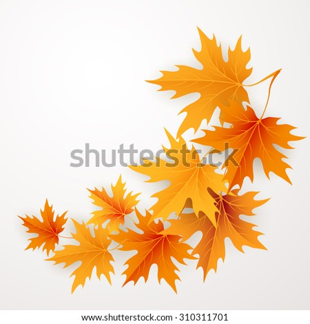 Autumn maples falling leaves background. Vector illustration - stock vector