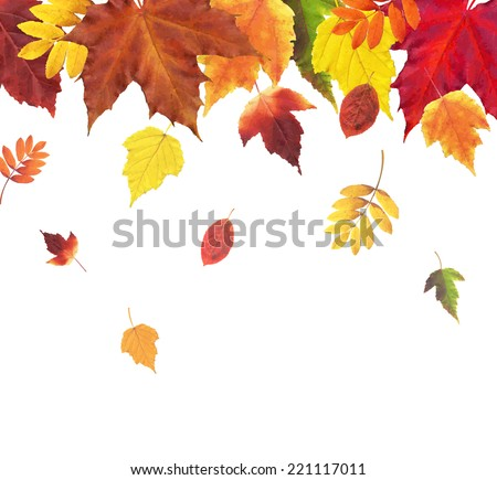 Autumn Retro Vintage Border, Vector Illustration - stock vector