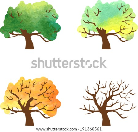 autumn tree changes painted by watercolor, four seasons , vector illustration