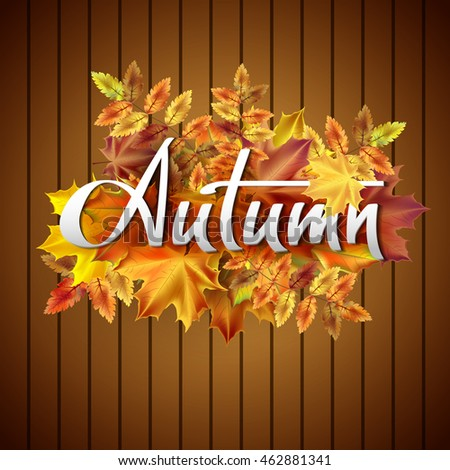 Autumn vector background with  leaves. Hand-written lettering. Typography