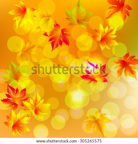 Autumn vector leaves text blurred background with shadow