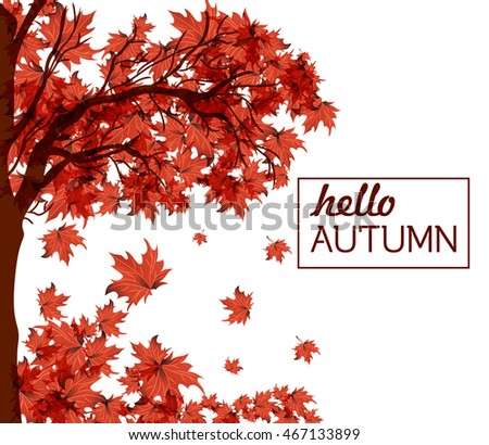 Autumn Wallpaper Fall  Leaves Festival template. Bright colourful autumn leaves