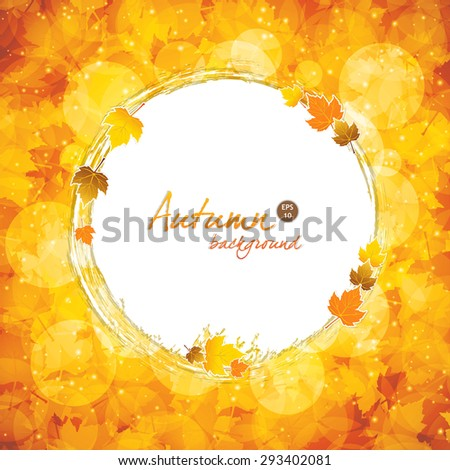 Autumnal leaf of maple and sunlight background - stock vector
