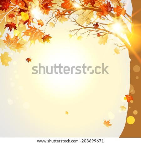 Autumnal trees with maple autumn leaves and sunlight. Place for text - stock vector