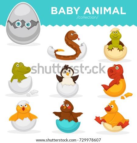 Baby Animals Hatch Eggs Cartoon Pets Stock Vector 729978607 ...