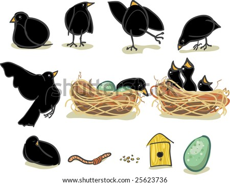 Baby black birds, momma, nest and accessories all illustrated to look hand-painted. - stock vector