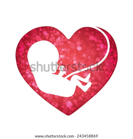baby inside heart - stock vector