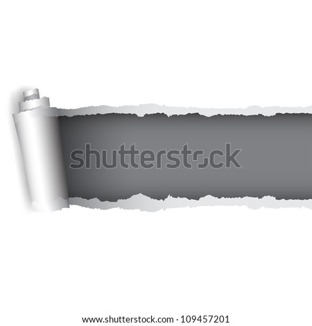 Background for the design of the torn paper - stock vector