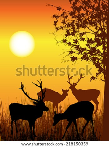 Background illustration of wild deer in forest  - stock vector
