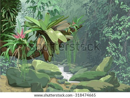 background, tropical, plant, ecology