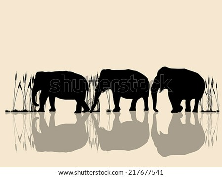 Background vector illustration with wild elephants in the water - stock vector