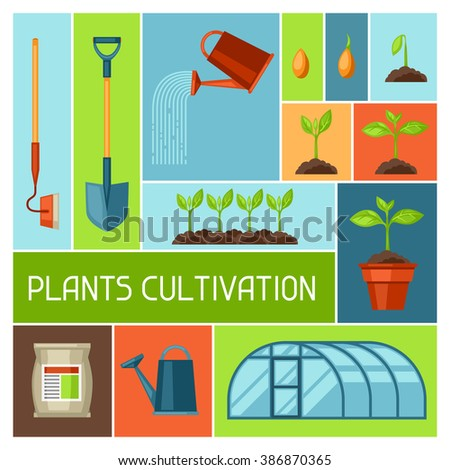 Background with agriculture objects. Instruments for cultivation, plants seedling process, stage plant growth, fertilizers and greenhouse.