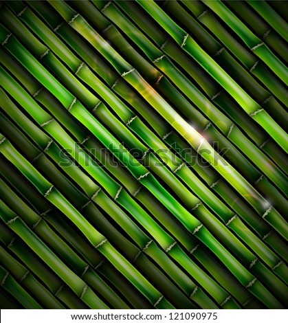 Background with bamboo. Eps 10 - stock vector