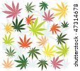 Background with colored marijuana leaves - stock vector