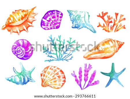Background with colorful seashells. Watercolor texture. Vector background. - stock vector