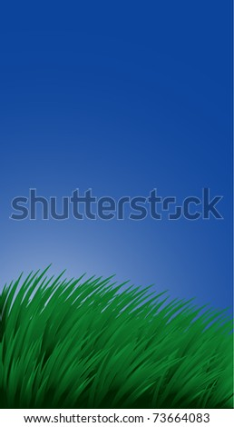 Background with grass and sky - stock vector