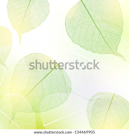 Background with green and white leaves. - stock vector