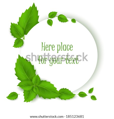 Background with green fresh leaves . Vector illustration.  - stock vector