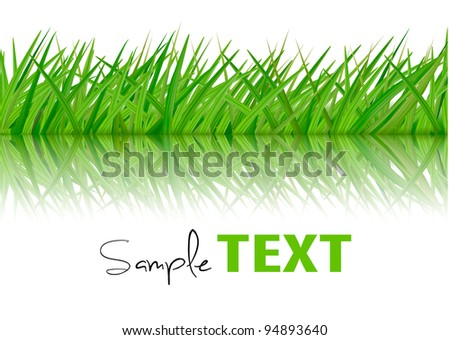 Background with green grass. Vector. - stock vector