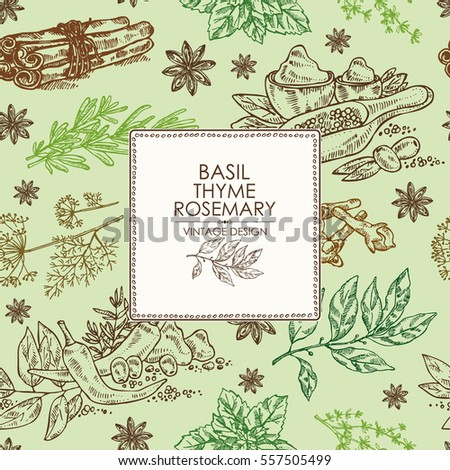 Background with herbs and spice. Bay leaf, clover, basil,thyme, mint, dill, stars anise, cinnamon. hand drawn