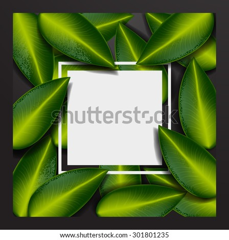 Background with Leaves. Summer tropical green leaves - stock vector